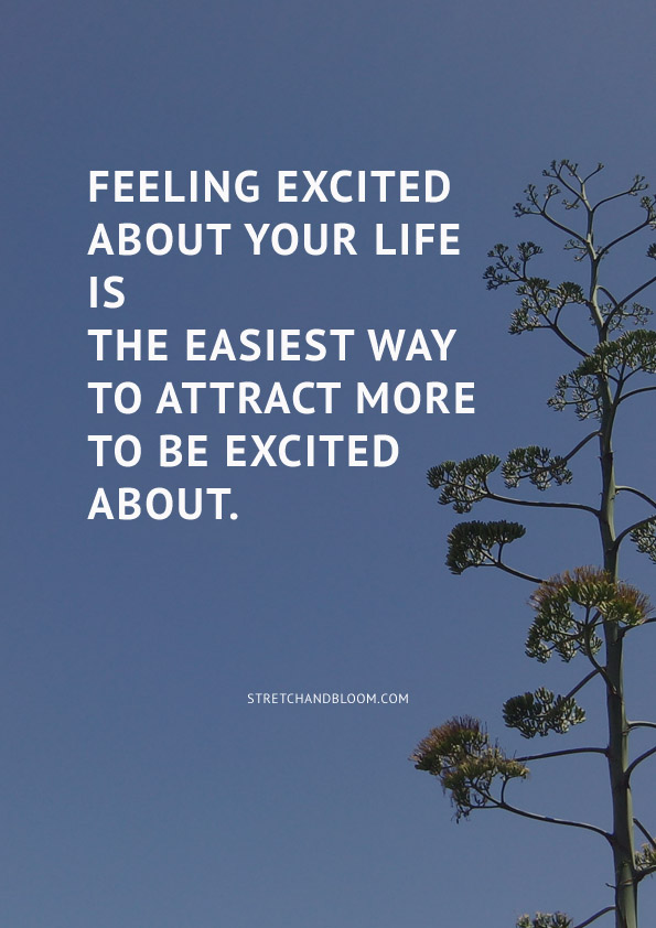 Feeling excited  about your life  is the easiest way  to attract more  to be excited about