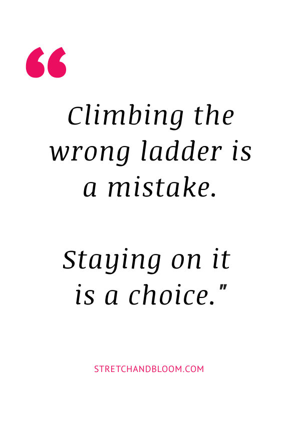climbed the wrong ladder quote