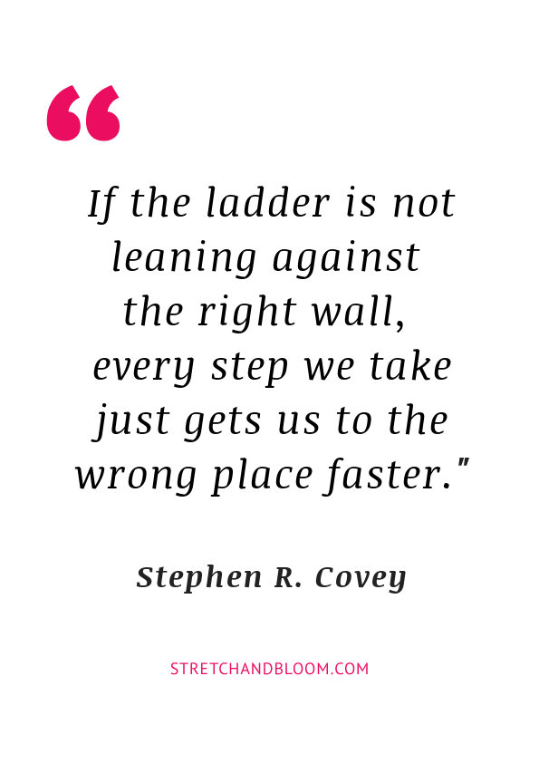 climbing the wrong ladder quote