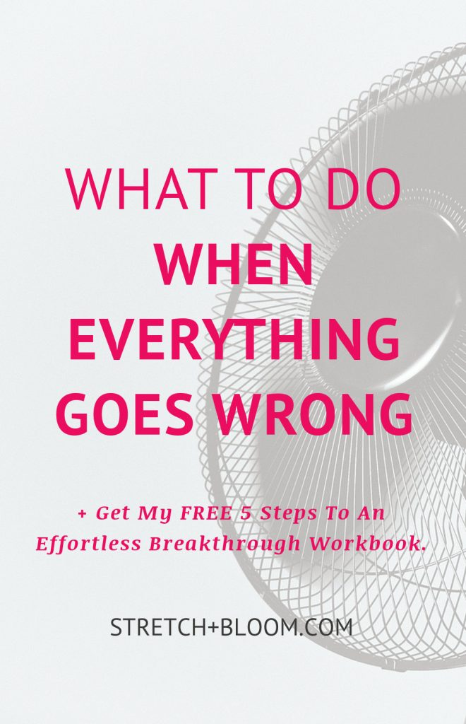 Ups and downs are part of life and sometimes your world comes crashing down. Click the pin for some insights on what to do when everything goes wrong. And make sure to grab my Free workbook on how to create an effortless breakthrough.