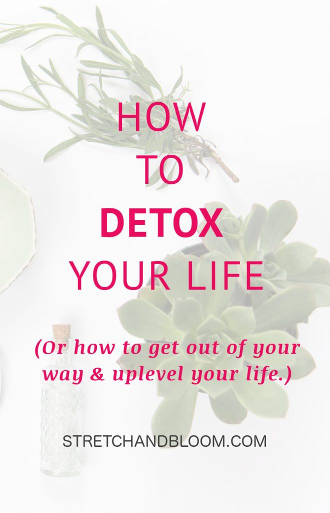 Many ambitious professional women are under tremendous pressure from juggle so many demands in life. Some come from society, however many are dues to sabotaging patterns. This article show you how to detox your life.