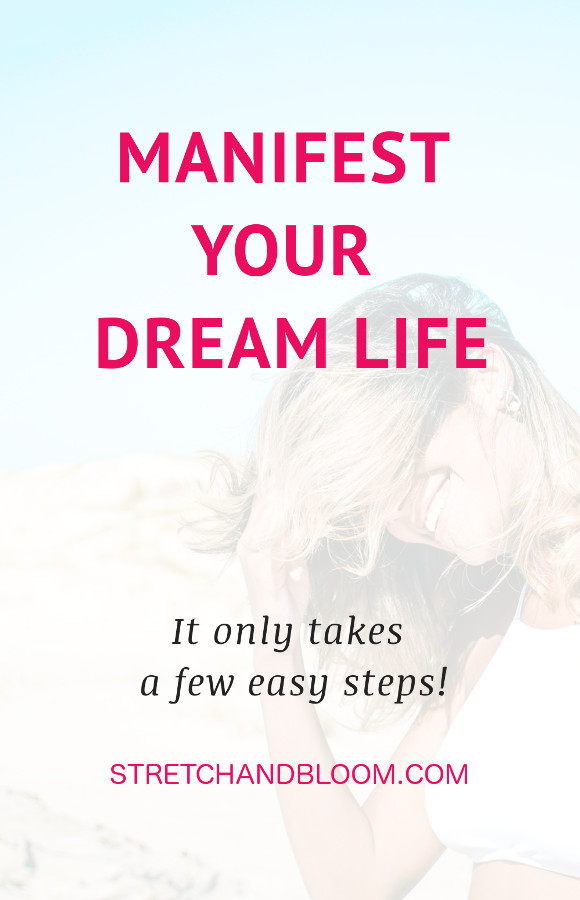 manifest dream life pin