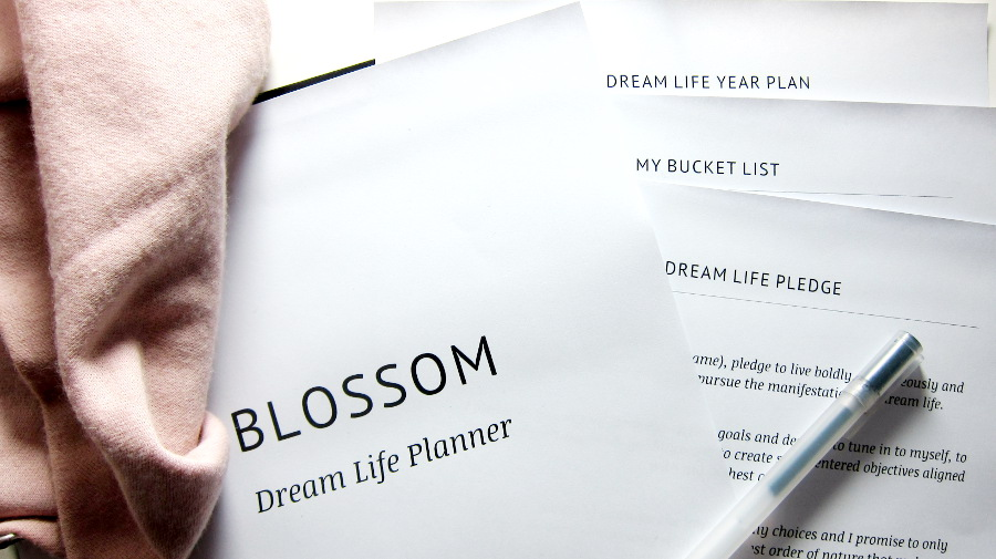 Blossom dream life planner