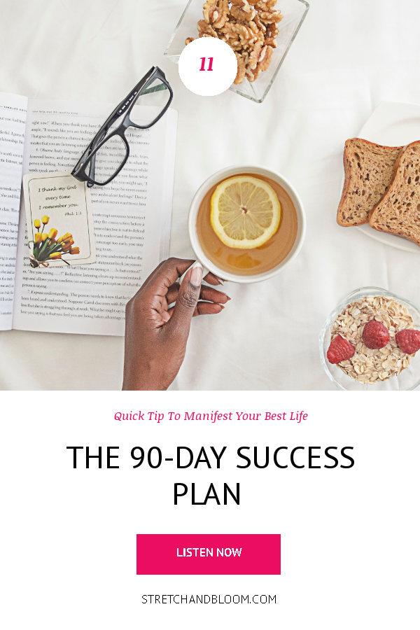 banner pinterest:The 90-Day success plan